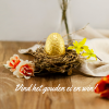 Afbeelding van Pasen Proefpakket Paaseitjes - Limoncello & Baileys