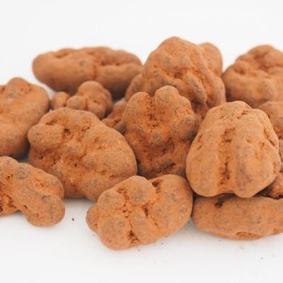 Chocolade Pecan truffel