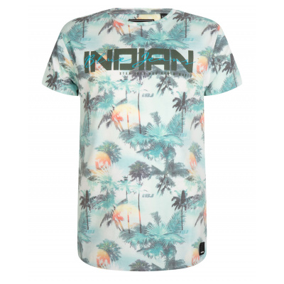 T-shirt fancy Indian IBJ boys hawai print