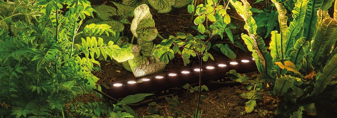 4638070150-Suslight-licht-3.jpg