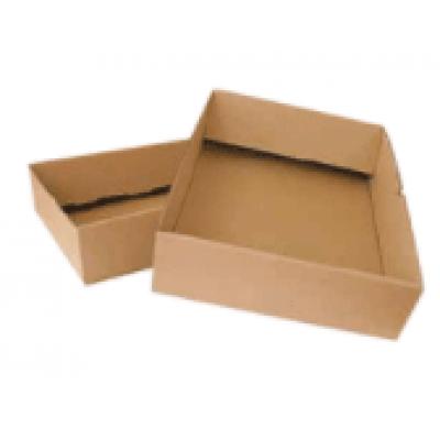 S-pack Speedpack doos 310x220x100 mm