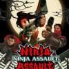 Afbeelding van Ninja Assault PS2