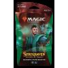 Afbeelding van TCG Magic The Gathering Strixhaven Green Theme Booster - Quandrix MAGIC THE GATHERING