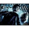 Afbeelding van Harry Potter Prime 3D puzzle 500pcs PUZZEL