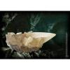 Afbeelding van Harry Potter: The Crystal Goblet Replica MERCHANDISE