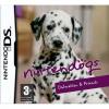 Afbeelding van Nintendogs Dalmatian & Friends NDS