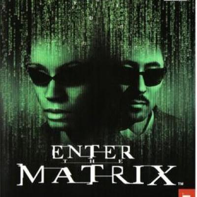 Foto van Enter The Matrix PS2