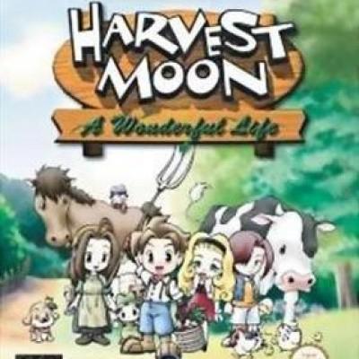 Foto van Harvest Moon A Wonderful Life Nintendo GameCube