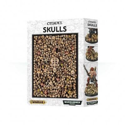 Citadel Skulls CITADEL