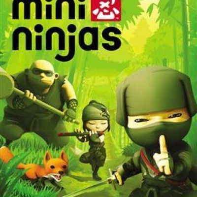 Foto van Mini Ninja's WII