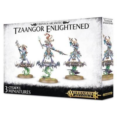 Tzeentch Arcanites Tzaangor Enlight WARHAMMER AOS
