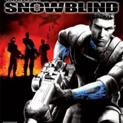 Foto van Project: Snowblind PS2