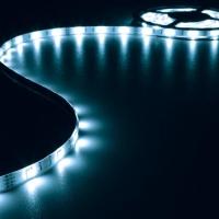 Foto van FLEXIBELE LED STRIP - BLAUW - 150 LEDs - 5m - 12V