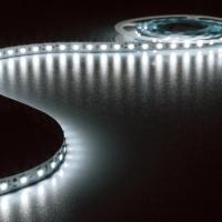 Foto van FLEXIBELE LED STRIP - KOUDWIT 6500K - 300 LEDs - 5m - 24V