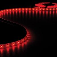 Foto van FLEXIBELE LED STRIP - ROOD - 300 LEDS - 5m -12V