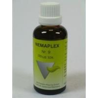 Nestmann Rhus toxidendron 9 Nemaplex