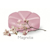 Creations Geurchips magnolia