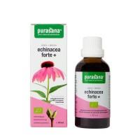 Purasana Echinacea forte+