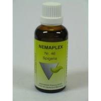 Nestmann Spigelia 46 Nemaplex