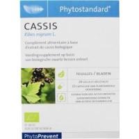 Phytostandard Zwarte aalbes/cassis