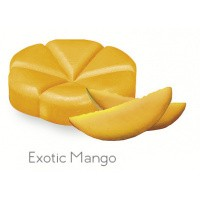 Creations Geurchips exotic mango