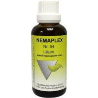 Nestmann Lilium 54 Nemaplex