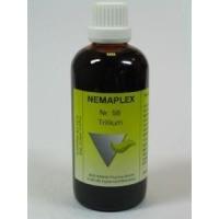 Nestmann Trillium 58 Nemaplex