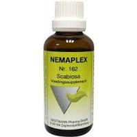 Nestmann Scabiosa 162 Nemaplex
