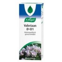 Valeriaan oer = D1