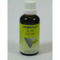 Nestmann Uva ursi 26 Nemaplex