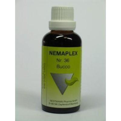 Nestmann Bucco 36 Nemaplex