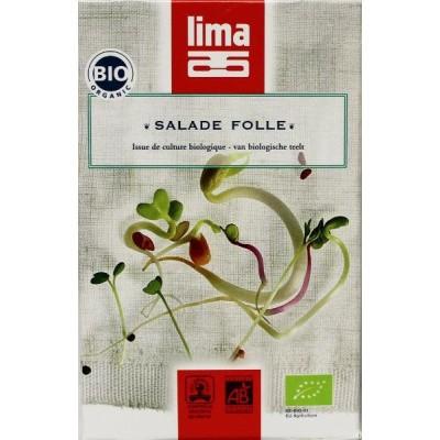 Lima Salade folle