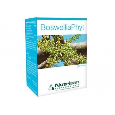 Nutrisan BoswelliaPhyt