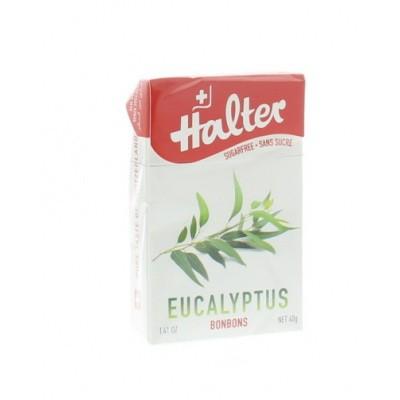 Halter Eucalyptus