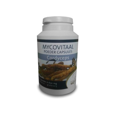 Mycovitaal Cordyceps