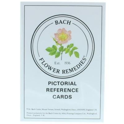 Bach Geillustreerde kaarten