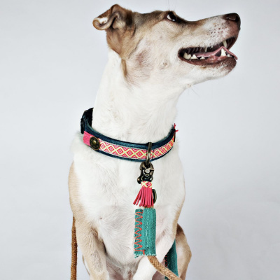 Foto van Dog With A Mission Sandy Moon Halsband, Demin Roze S