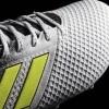 Afbeelding van Adidas ACE 17.3 FG