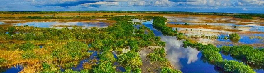 Florida Travel Guide - Everglades