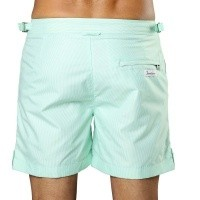 Afbeelding van Swim Short Tampa Stripes Hint of Mint