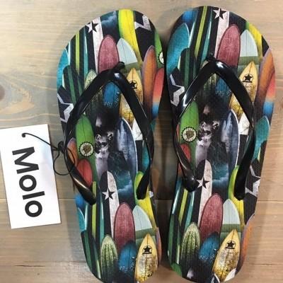 Molo Zeppo surfplanken zo17