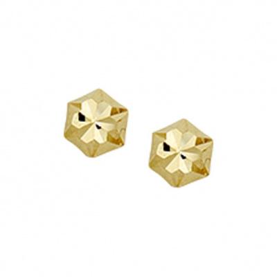 Oorknoppen poli/mat gediamanteerd 40.17033