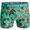 Afbeelding van BJÖRN BORG 2p SHORTS BB VIBRANT LEAVES & BB SUPER SHAD 1811-1432-81021