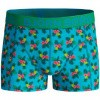 Afbeelding van BJORN BORG SHORTS FOR BOYS BB LIFE 2P EXOTIC MINI &BB PARADISE MINI