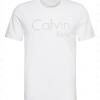 Afbeelding van Calvin Klein S-S CREW NECK, 8YI 000NM1353E8YI