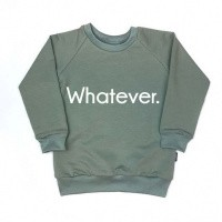 Foto van KMDB Sweater Whatever Old Mint