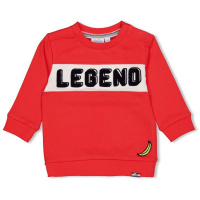 Foto van Feetje Sweater - Playground
