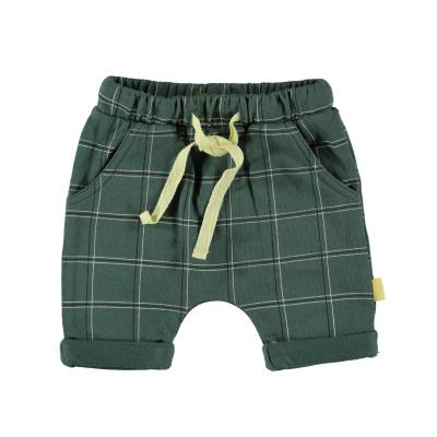 Bess Shorts Check