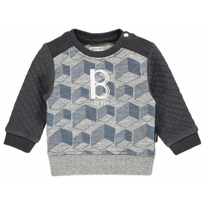 Noppies Boys Sweater ls Tracy aop