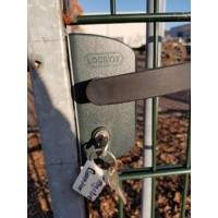 Afbeelding van Groene poort